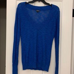 Express Vneck Sweater